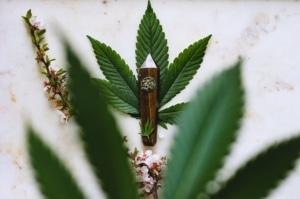 Cannabis leaf